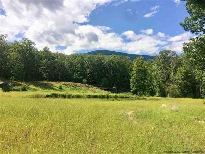 Saugerties Residential Lots & Land For Sale: 61 Parnassus