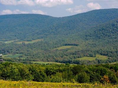 Delaware County Residential Lots & Land For Sale: Lot 2 1684 Vega Mountain