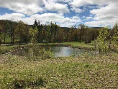 Greene County Residential Lots & Land For Sale: 963 Route 1