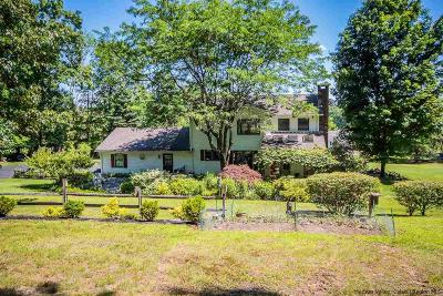 Shokan Single Family Home For Sale: 203 Mountain Road