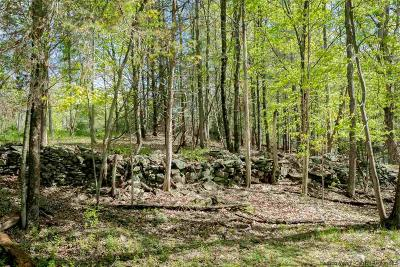 Saugerties Residential Lots & Land For Sale: Highwoods Road