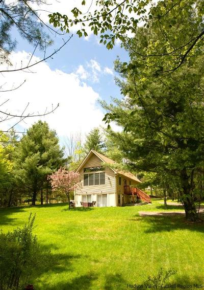 Ellenville Single Family Home For Sale: 125 Spook Hole Road