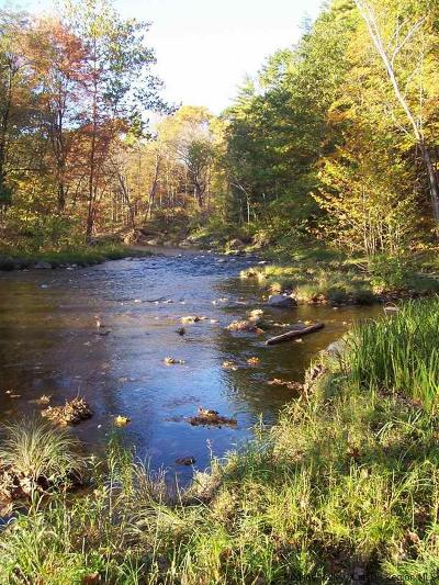 Greene County Residential Lots & Land Fully Executed Contract: 72 Indian Spring Road