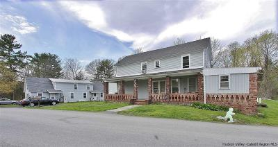 Saugerties Multi Family Home For Sale: 103 & 105 Flatbush Camp Road