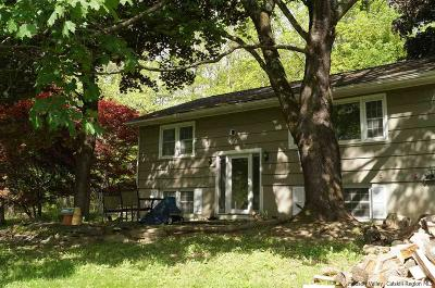 New Paltz NY Rental For Rent: $1,900