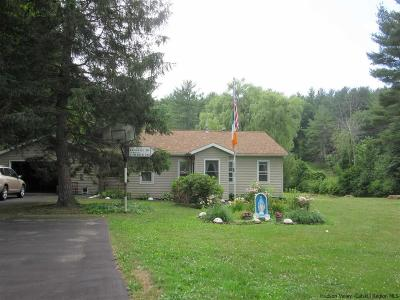 Greene County Single Family Home For Sale: 1501 Route 145