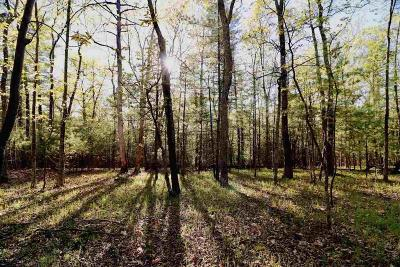 Kingston NY Residential Lots & Land For Sale: $299,000