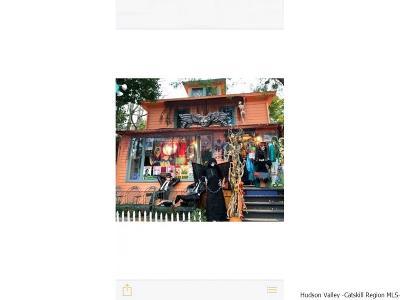 Woodstock Commercial For Sale: 71 Tinker Street