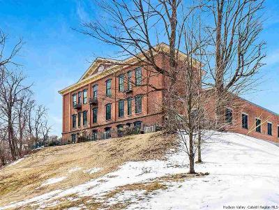 Ulster County Condo For Sale: 214 W Chestnut Street