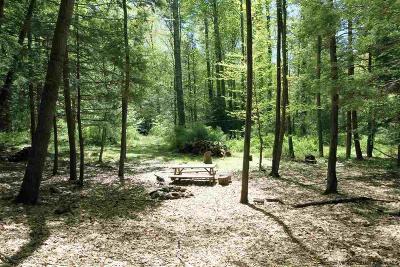 Mount Tremper Residential Lots & Land For Sale: Winne Road