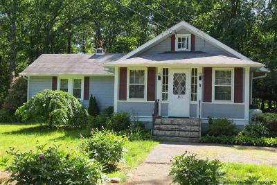 Greene County Single Family Home For Sale: 397 Route 32a