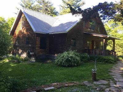 Ulster County Single Family Home For Sale: 221 Union Center Rd.