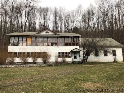 Ulster County Multi Family Home For Sale: 72 Briggs Highway