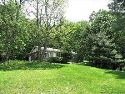 New Paltz Single Family Home For Sale: 344 Rte 32 North