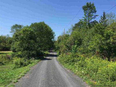 Greene County Residential Lots & Land For Sale: Schoharie Turnpike