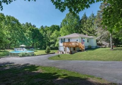 Saugerties Single Family Home Accepted Offer Cts: 60 George Saile Road