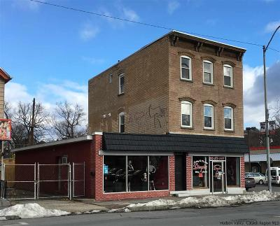 Ulster County Rental For Rent: 338 Broadway #2