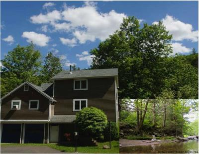 Woodstock Single Family Home For Sale: 4867 Route 212