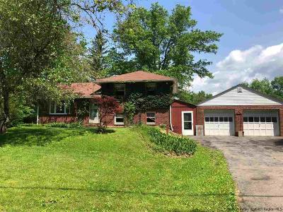 New Paltz NY Single Family Home For Sale: $259,900