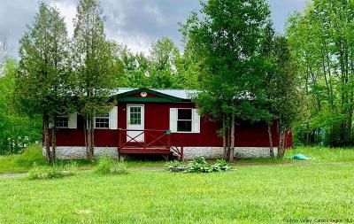 Greene County Single Family Home For Sale: 5763 Route 23a