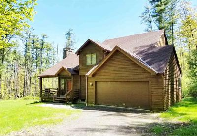 Ulster County Single Family Home For Sale: 4 Blue Jay Way