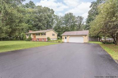 Saugerties Single Family Home For Sale: 28 Riozzi Court