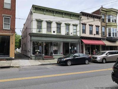 Saugerties Multi Family Home For Sale: 105-107 Partition Street