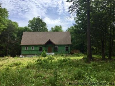 Saugerties Single Family Home For Sale: 123 Russell Lane