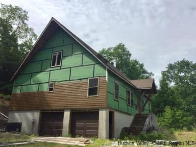 Saugerties Single Family Home For Sale: 142 Russell Lane