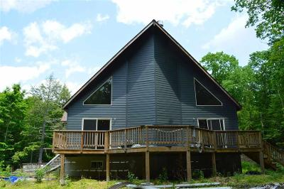 Ulster County Single Family Home For Sale: 143 Russell Lane
