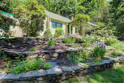 Ulster County Single Family Home For Sale: 27 Piney Woods Road