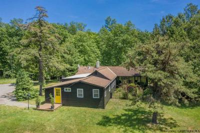 Ulster County Single Family Home For Sale: 1338 Glasco Turnpike