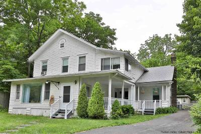 Phoenicia Single Family Home For Sale: 46 Route 214