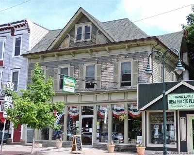Delaware County Commercial For Sale: 768 Marin Street