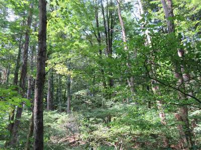 Ulster County Residential Lots & Land For Sale: Tanglewood Court