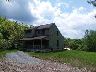 Delaware County Single Family Home For Sale: 706 Emerald Lake Road