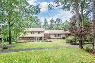 Ulster County Single Family Home For Sale: 60 Witchtree