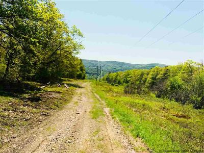 Delaware County Residential Lots & Land For Sale: 137 Delaware Cty Hwy 11