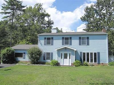 Ulster County Rental For Rent: 19 Brittany Dr