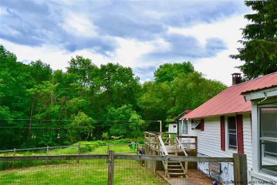 Greene County Single Family Home For Sale: 132 Turk Hollow