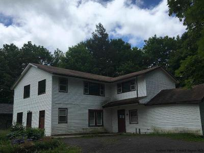 Greene County Multi Family Home For Sale: 4869 Route 23