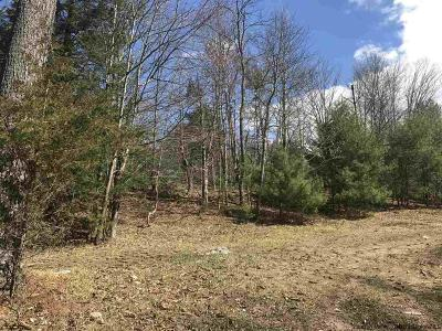 Dutchess County, Orange County, Sullivan County, Ulster County Residential Lots & Land For Sale: Lot#9 Heritage Drive