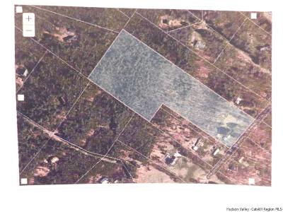 Ulster County Residential Lots & Land For Sale: 273 Ridgeview Rd