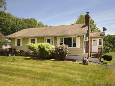 Ulster County Single Family Home For Sale: 782 Kings Hwy