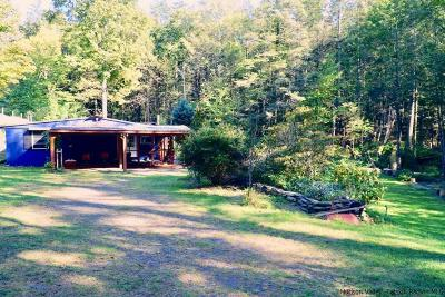 Ulster County Single Family Home For Sale: 46 Holly Road