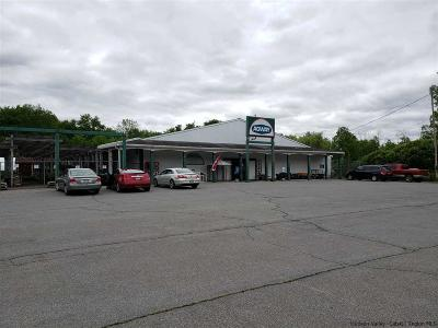 Ulster County Commercial For Sale: 145 North Chestnut Street