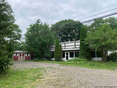 Ulster County Commercial For Sale: 1574 Route 28