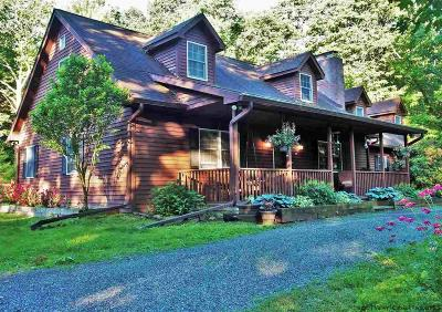Ulster County Single Family Home For Sale: 491 Wilhelm Road