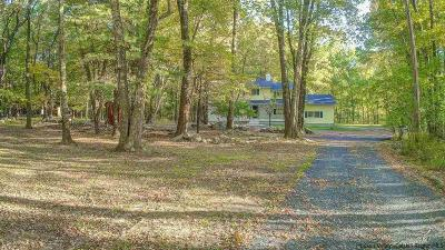 Single Family Home For Sale: 271 Tillson Lake Road
