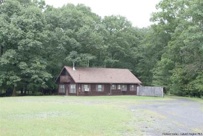 Kingston Single Family Home For Sale: 1040 Route 28